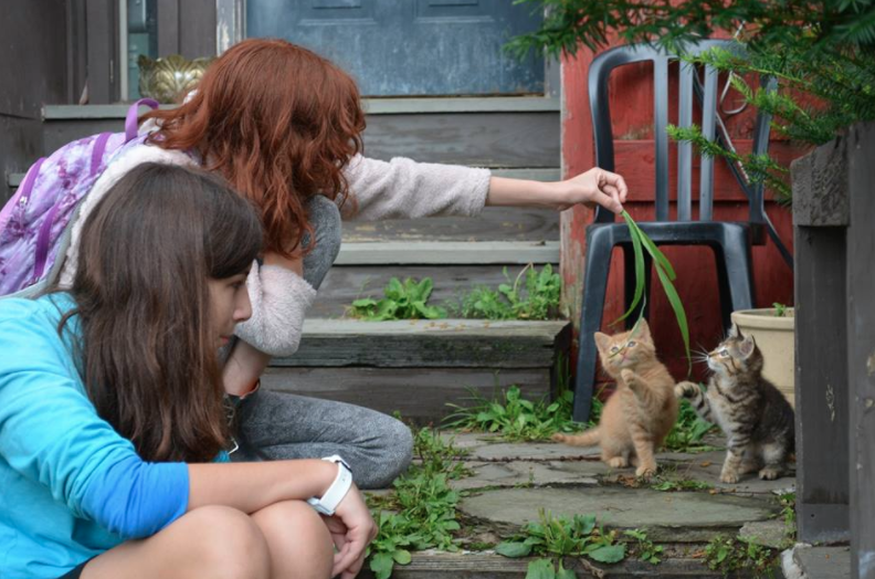 arts camp campers with cats